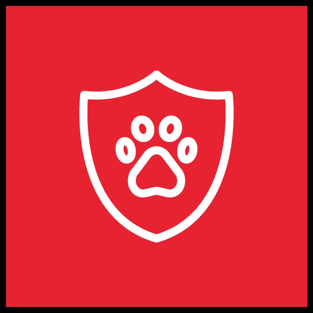 Icon Pet Insurance